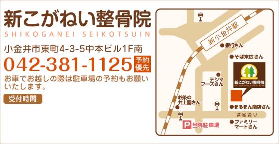 新こがねい整骨院 小金井市東町4-3-5 042-381-1125